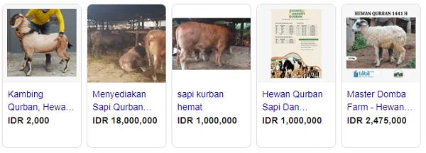 Tampilan Iklan Jual beli hewan kurban secara online